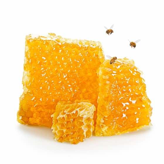 $20 Honeybees