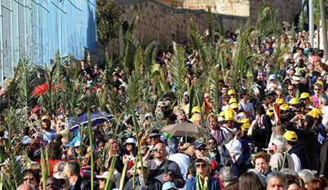 Palm Sunday, Mount of Olives